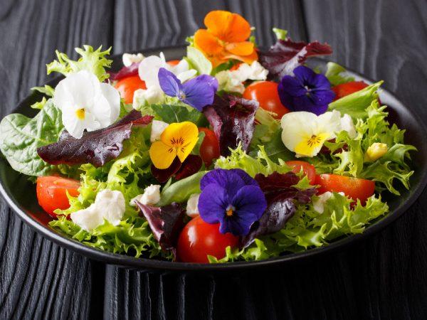 Essbare Blüten – Blütenmeer auf dem Teller
