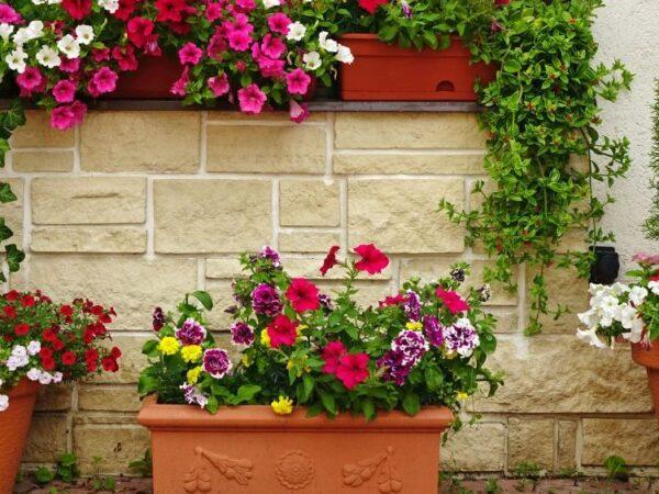 Blumenkästen auf dem Balkon – darauf sollten Sie achten