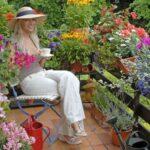 Sommerbepflanzung – Blütenmeer auf Balkon und Terrasse
